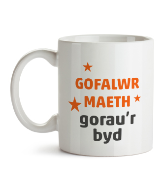 Mug - Worlds best foster carer (Welsh)